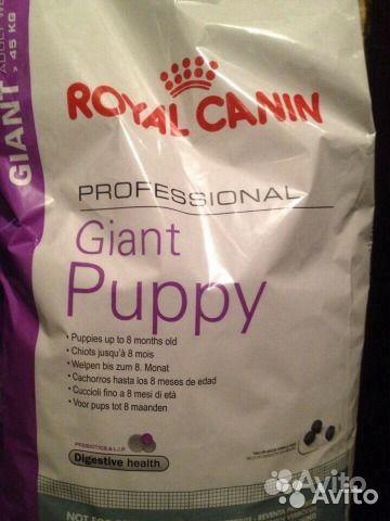 Giant puppy роял канин