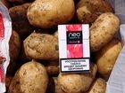 Молодой картофель оптом от производителя
