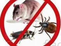 Травить насекомых всех видов