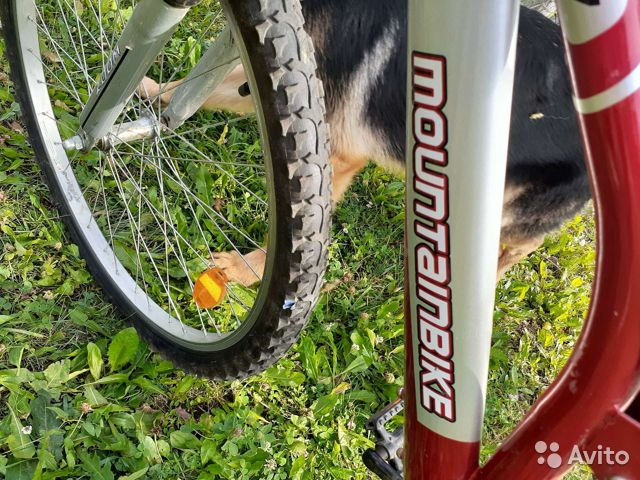 Велосипед горный  купить 5