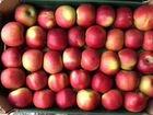 Яблоки Молдова